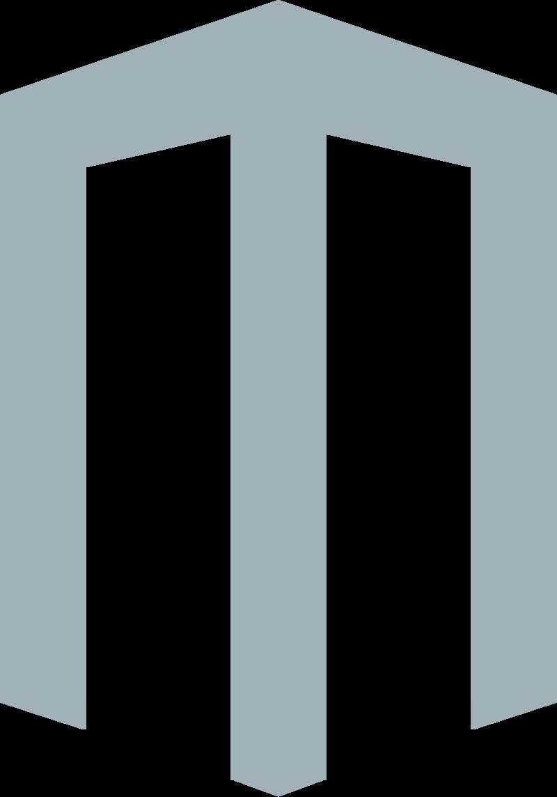 Msuite, Logo Icon
